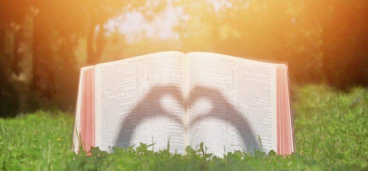 «Necesitamos dar testimonio de lo que vemos y sabemos en Dios».